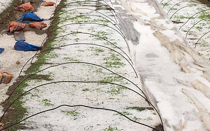 Kale'de dolu yağışı etkili oldu
