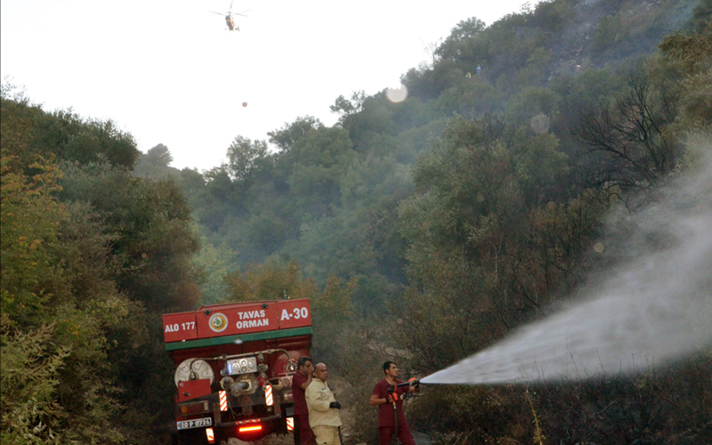 Sarayköy'deki orman yangını kontrol altında