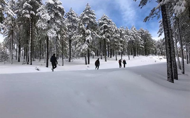 Çameli'nin karlı dağlarında yürüyüş