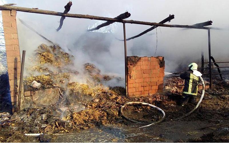 Yangında üreticinin 1 yıllık emeği kül oldu