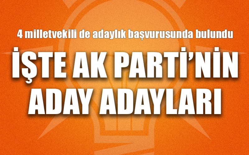 AK Parti'de milletvekili aday adayları belli oldu