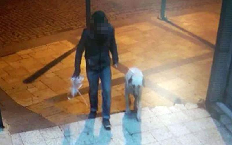 Köpeğe tecavüz olayının faili yakalandı