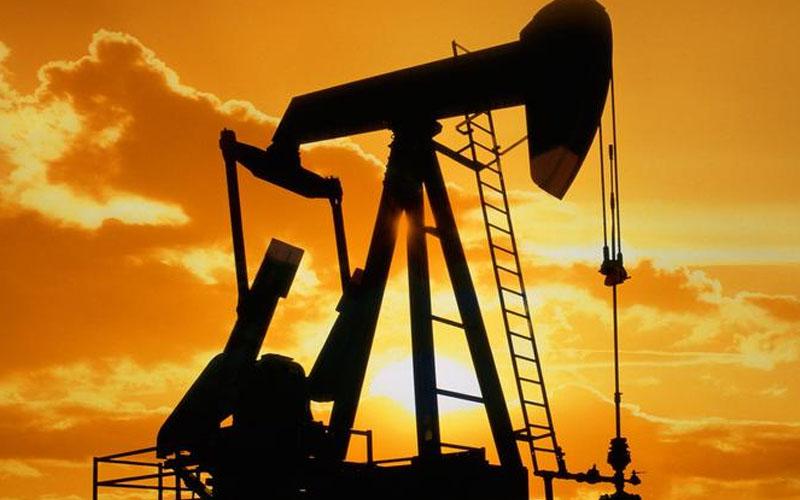 Turcas Denizli'de petrol arayacak