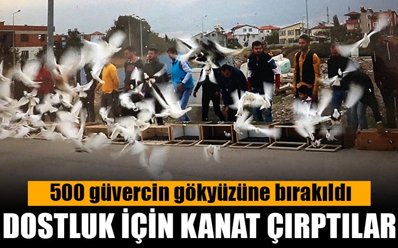 Güvercinler dostluk için uçuruldu
