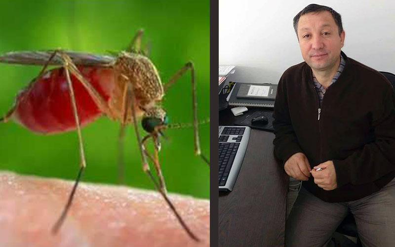 Afrika sivrisineği Denizlili iş insanını öldürdü