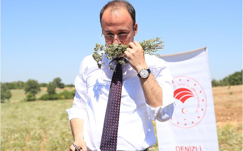 Örki: Pamukkale, turizmden sonra tarımda da ön planda