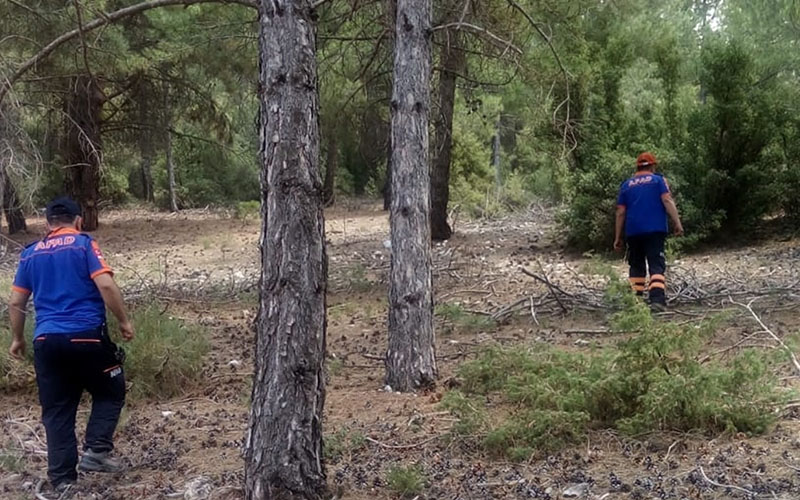 Kaybolan kadın çoban için arama çalışması başlatıldı