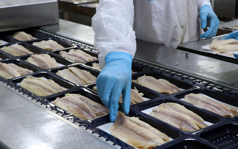 Denizli'nin alabalığı Çin ve Japonya pazarında