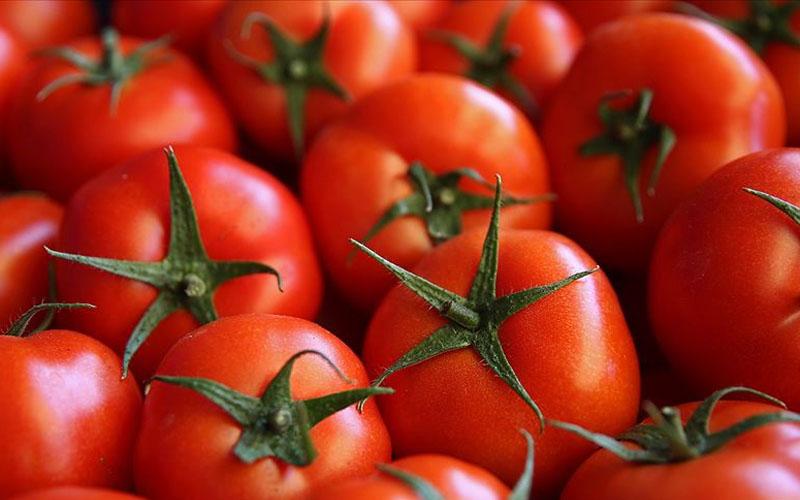 Denizli'de Ağustosun zam şampiyonu yüzde 30,54 ile domates
