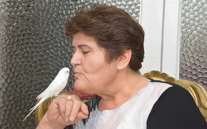Muhabbet kuşuyla hayata tutundu