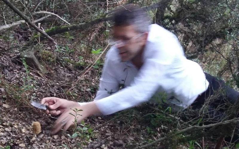 Milletvekili Öztürk, kuzu göbeği için dağa çıktı