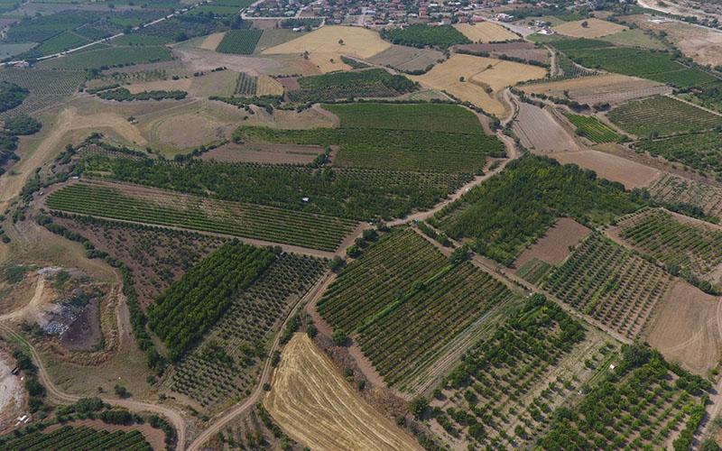 Honaz Ovası 2. kısım 18,5 milyon lira yatırımla sulamaya açıldı