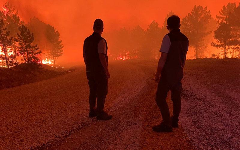 Çardak'taki yangından yürekleri dağlayan fotoğraflar