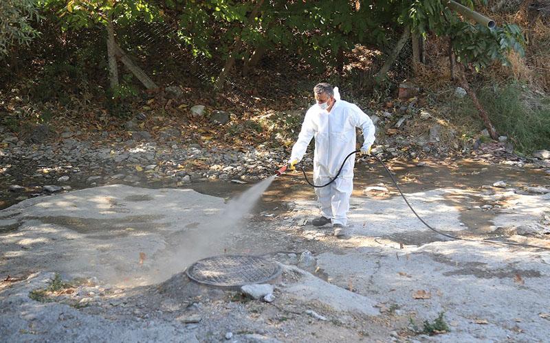 Pamukkale Belediyesi'nden haşerelere karşı ilaçlama çalışması
