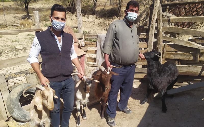 Çalınan keçilerine 9 ay sonra kavuştu
