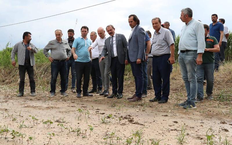 Dolu ve zirai dondan zarar gören çiftçiye 4,5 milyon lira ödenecek