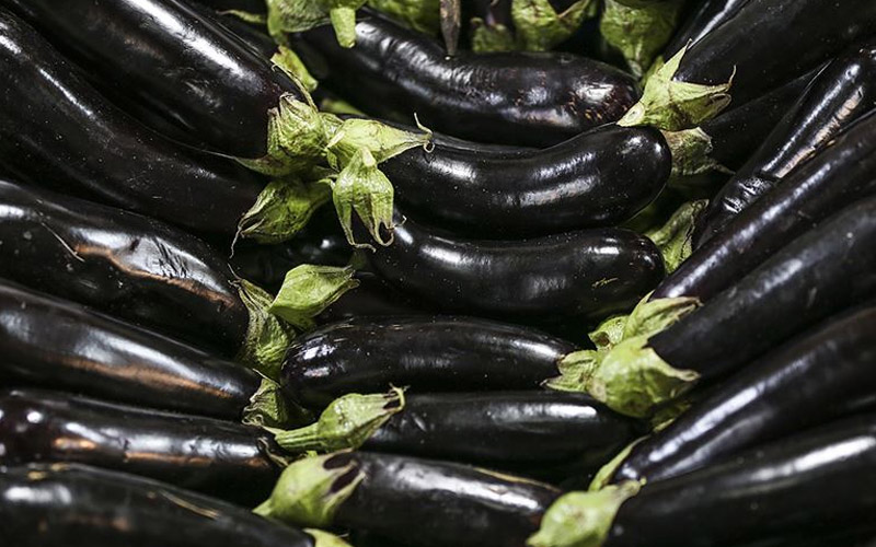 Patlıcan ve taze fasulye eylülde fiyatı en çok artan ürünler oldu