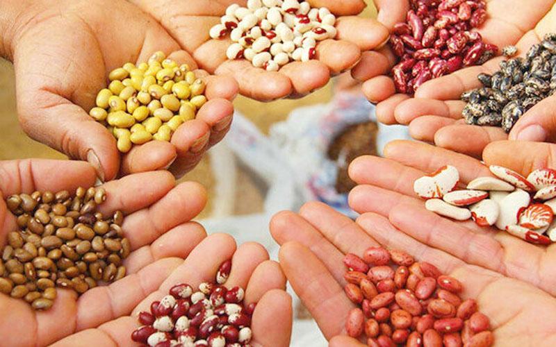 3 oda başkanı: Gıda egemenliğimiz için üretim ekonomisine geçilmeli