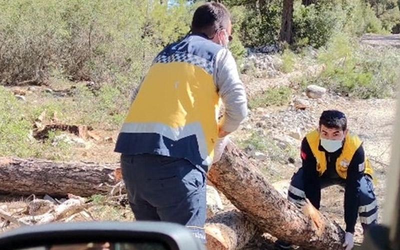 Ambulans ekibi hastaya ulaşmak için yoldaki odunları temizledi