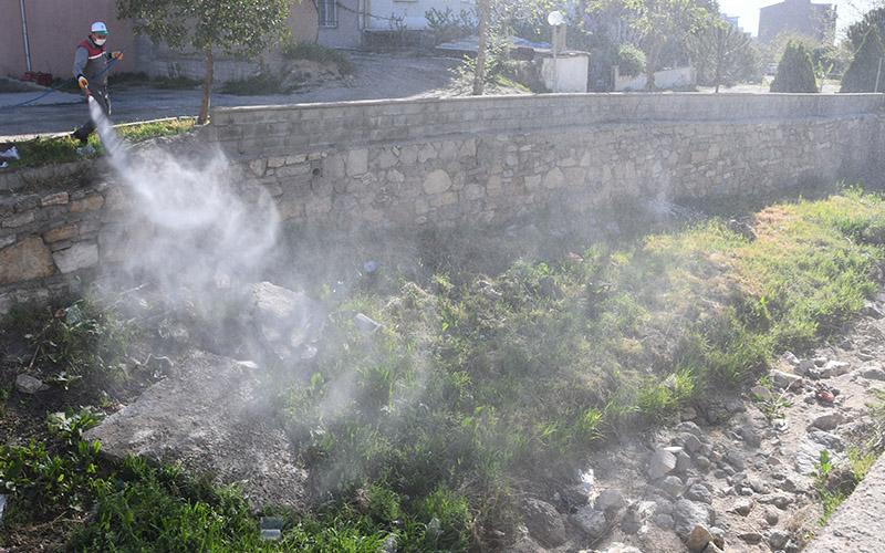 Buldan Belediyesinden haşerelere karşı ilaçlama çalışması