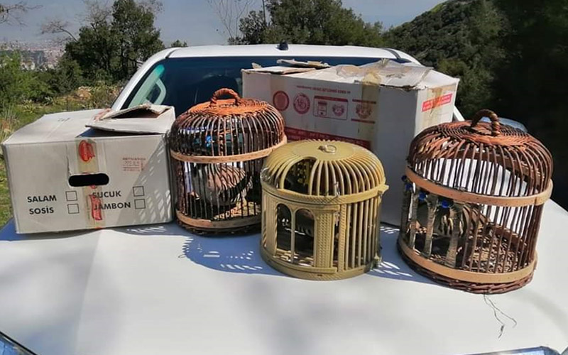 Kaçak avladığı 8 kekliği görevlilere satmaya çalışan kişiye para cezası