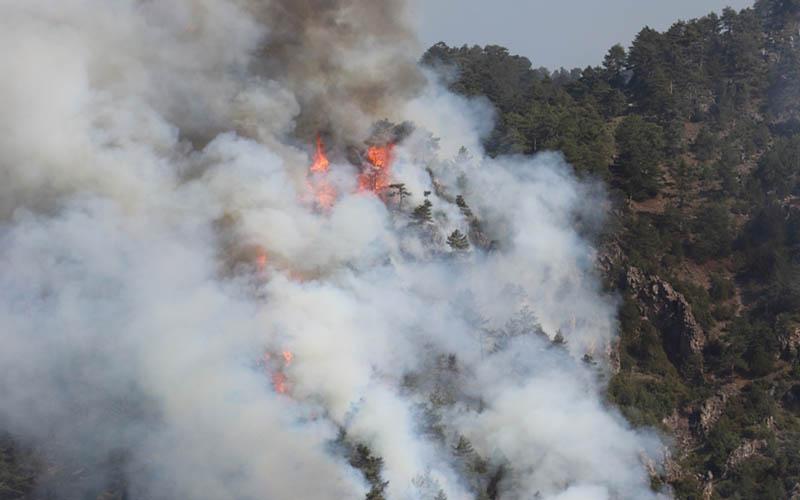 Çardak'taki yangınla ilgili 3 kişi gözaltına alındı