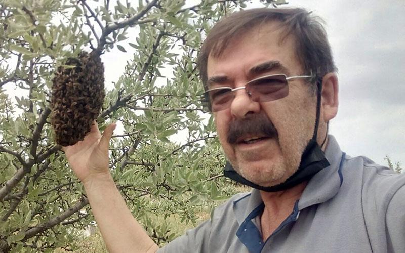 Kovandan kaçan arıları çıplak elle topladı