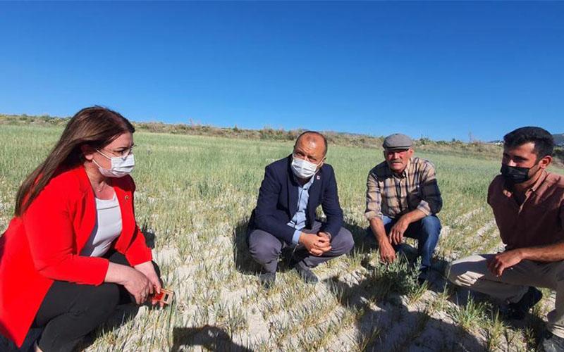 CHP Tarım Komisyonu kuraklık incelemesi yaptı
