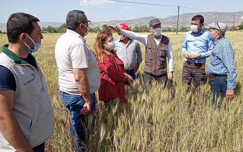 Çavuşoğlu: Verimli topraklarda üretim yapılamaz duruma gelindi