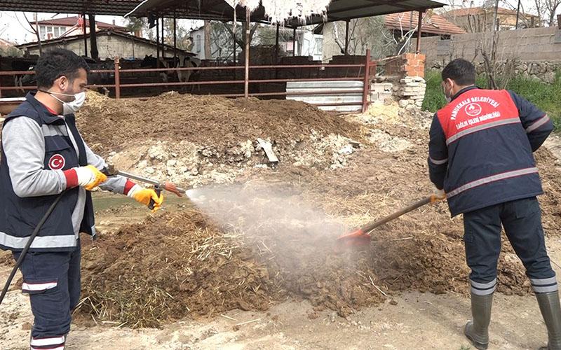 Pamukkale Belediyesinden ücretsiz ilaçlama ve veteriner danışmanlık desteği