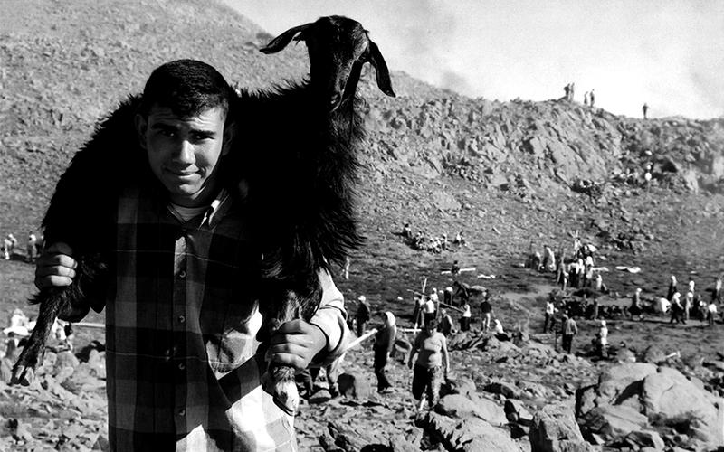 Keçi Çobanı çocuk…