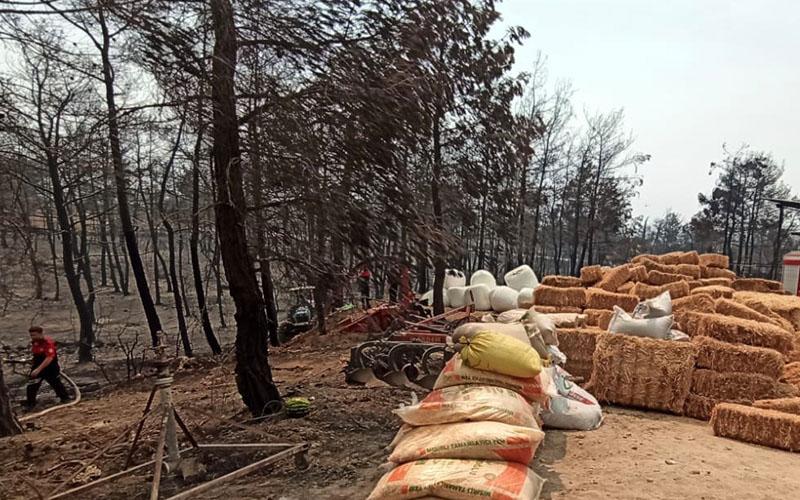 Büyükşehir İtfaiye ekipleri, yangın bölgesindeki çalışmalarını sürdürüyor
