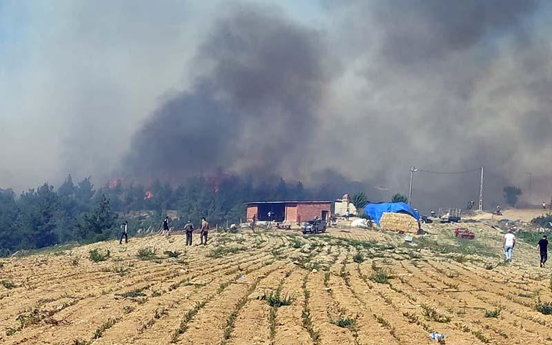 Buldan'daki yangın bir mahalleyi tehdit ediyor