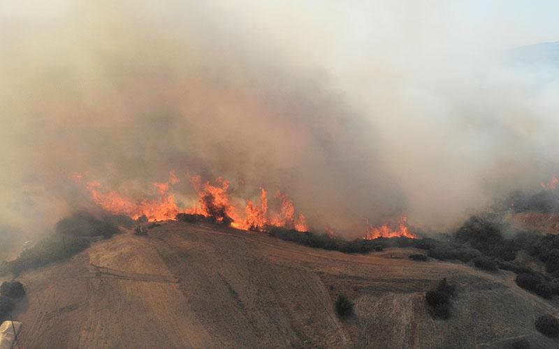 Kesici: Yangınların önlenmesinde doğal su kaynakları önemli