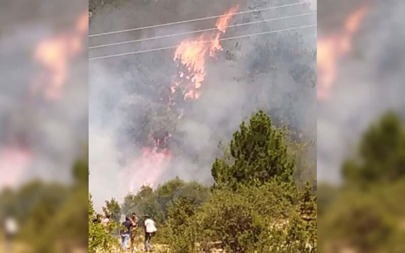 Milli Park'taki yangın kontrol altına alındı