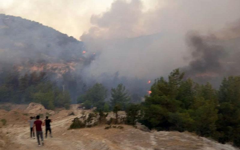 Sarayköy ve Buldan ilçelerinde 2 yangın daha