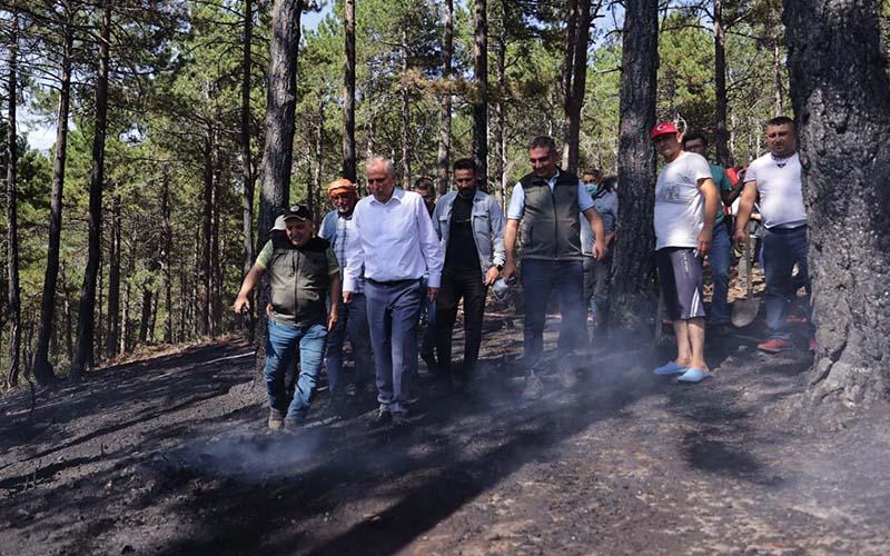 Gönüllüler, Milli Park'a yangını söndürmeye koştu