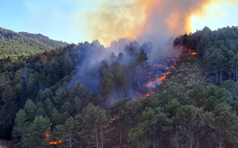 Babadağ'da orman yangını çıktı