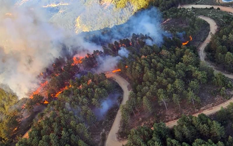Babadağ'daki yangında 2 hektar orman alanı zarar gördü